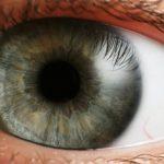 iPhone se v budoucnu zbaví čtečky otisků, skenování oční duhovky je prý lepší