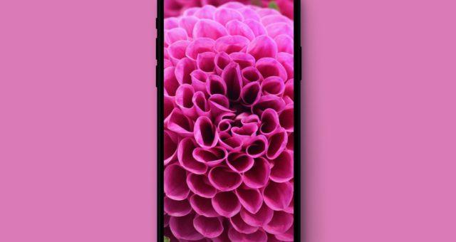 Jak pořídit screenshot na iPhone X?