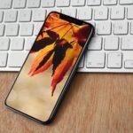Podzimní tapety pro iPhone a iPad