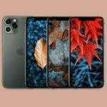 Tapety týdne: Podzimní barvy