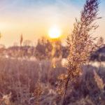 Tapety týdne: východ slunce